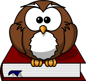 lemmling Cartoon owl sitting on a book